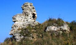Trzebinia to jedna z wielu jurajskich gmin, a skałka triasowa w Bolęcinie to jedna z wielu naszych trzebińskich atrakcji (Fot.: Tomasz Piszczek).